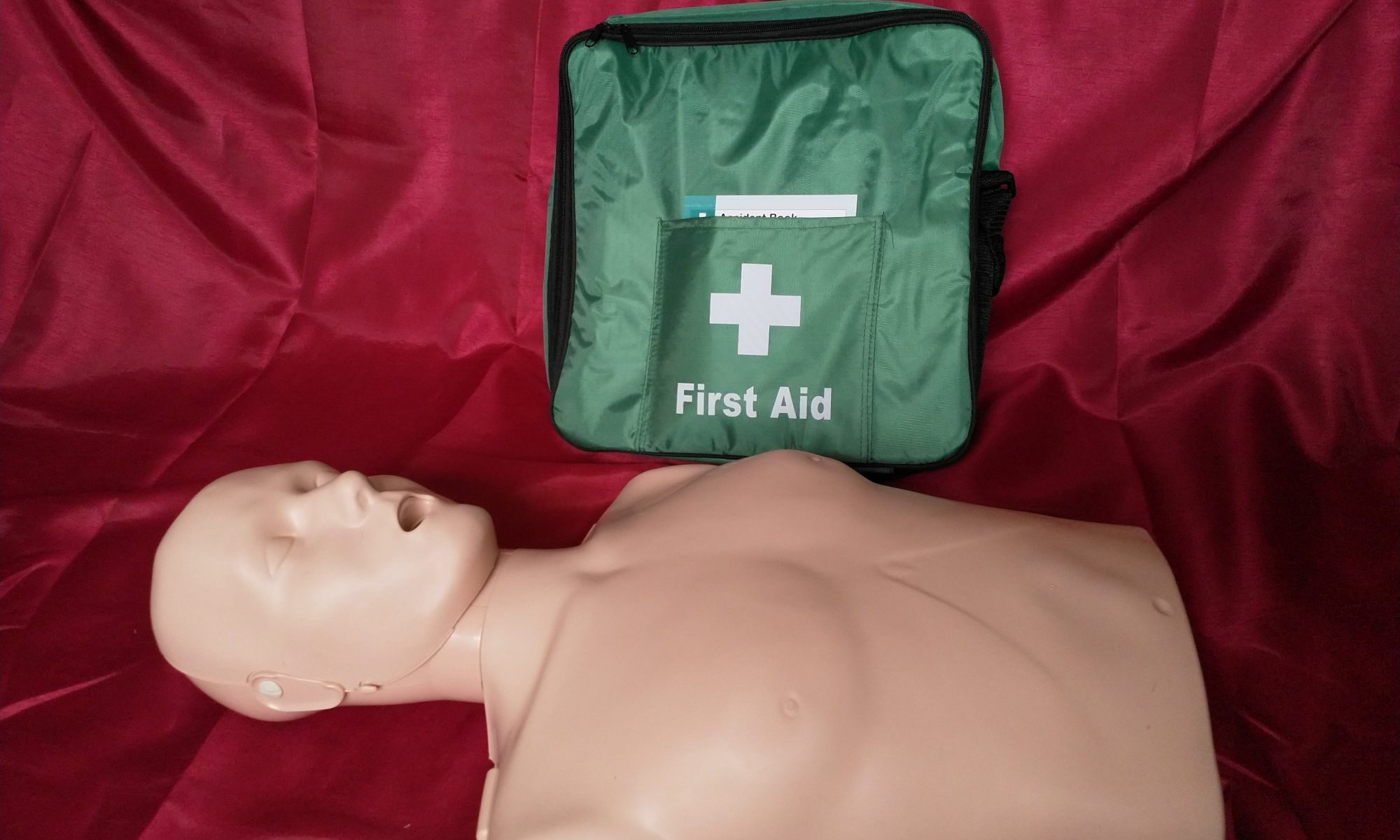 Adult Manakin with First Aid Kit
